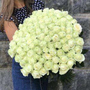 Купить 101 розу в Киеве